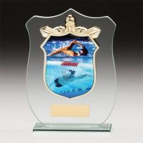 Titans Glass Swimming Shield